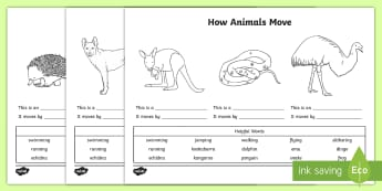 How Animals Move Activity Sheet - Australian Curriculum, biological sciences, animal movement, how animals move, Australian animals, p