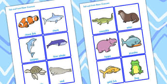 Salt and Fresh Water Creatures Sorting Cards (Under the Sea) - water, sorting