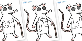 Final Letter Blends on Blind Mice - Final Letters, final letter, letter blend, letter blends, consonant, consonants, digraph, trigraph, literacy, alphabet, letters, foundation stage literacy