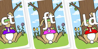 Final Letter Blends on Sleeping Hare - Final Letters, final letter, letter blend, letter blends, consonant, consonants, digraph, trigraph, literacy, alphabet, letters, foundation stage literacy