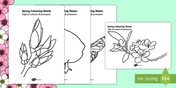 Spring Colouring Posters English/Italian - Spring Colouring Sheets -  Spring, colouring, fine motor skills, poster, worksheet, lambs, daffodils