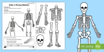 A Moving Skeleton Activity Sheet - amazing fact august, craft, model, amazing fact august, KS1, body, bones, worksheet