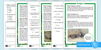 KS1 Badgers Differentiated Comprehension Go Respond Activity Sheets - Children's Books, story, book, Easter, save, saving, Easter Bunny, bunny, bunnies, stories, chick,
