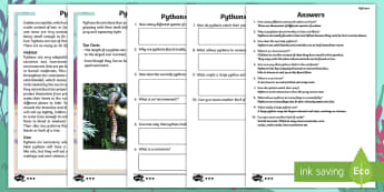 Year 2 Pythons Differentiated Comprehension Go Respond Activity Sheets - pythons, snakes, skin, patterned, pattern, camouflage, camouflaged, ask, answer, questions, find, lo