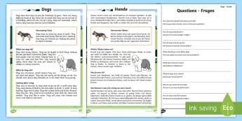 Dogs Reading Comprehension Activity Sheets English/German - read, mammals, dog, animals, EAL, German, English-German,,German-translation