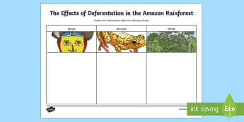 The Effects of Deforestation in The Amazon Rainforest Writing Activity Sheet - World Around Us KS2, Northern Ireland, amazon rainforest, amazon, tropics, deforestation