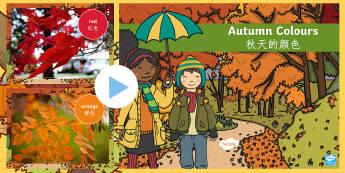 Autumn Colours Photo PowerPoint English/Mandarin Chinese  - powerpoint, photo powerpoint, autumn photo powerpoint, photo, colours, autumn colours, discussion st