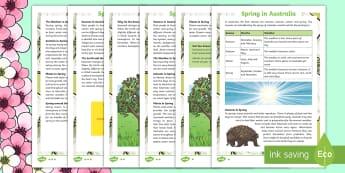 3-6 Spring in Australia Differentiated Reading Comprehension Activity - Spring, Australia, Seasons, Weather, reading, comprehension, fact file, factsheet,Australia