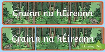 Meirge Taispeána: Crainn na hÉireann - ROI- National Tree Week 5th - 12th March, Crainn na hÉireann, crainn, roi, republic, ireland, irish