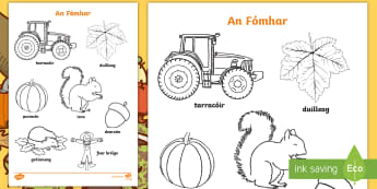 Autumn Colouring Activity Sheet Gaeilge - aimsir, irish, gaeilge, autumn, Fómhair,Irish, worksheet