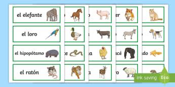 Animals Word Cards Spanish - Spanish, Vocabulary, KS2, animals, pets, word, cards