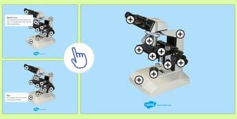 Parts of a Microscope Picture Hotspots - KS3/4 Picture Hotspots, Microscope, science, hotspot