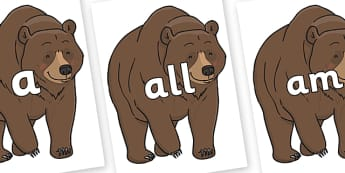 Foundation Stage 2 Keywords on Bear - FS2, CLL, keywords, Communication language and literacy,  Display, Key words, high frequency words, foundation stage literacy, DfES Letters and Sounds, Letters and Sounds, spelling