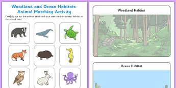 Woodland and Ocean Habitats Animal Sorting Activity Sheet - woodland, ocean, habitats, animal, sorting, sort, worksheet