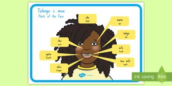 Parts of the Face Poster Niuean/English - niue, niuean language week, teeth, head, eye, ear, , labelling, niuean