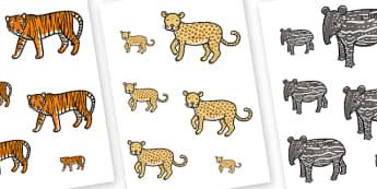 Jungle Animal Size Ordering - jungle animals, size ordering, jungle themed size ordering, animal themed size ordering, jungle animal size ordering
