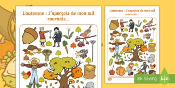 Feuille d'activités : J'aperçois de mon oeil sournois  -  Français, expression orale, vocabulaire, cycle 1, cycle 2, Automne