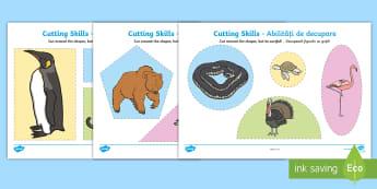 Cutting Skills Activity Sheets Romanian/English  - EAL, cutting, cutting worksheet, using scissors, cutting skills, fine motor skills, motorskills, shp