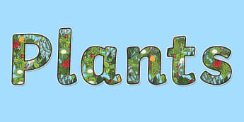 'Plants' Display Lettering - plants, plants lettering, plants display letters, plants display, plants display resources, living things, green plants, ks2