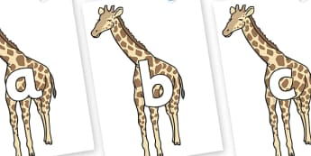 Phoneme Set on Giraffe - Phoneme set, phonemes, phoneme, Letters and Sounds, DfES, display, Phase 1, Phase 2, Phase 3, Phase 5, Foundation, Literacy