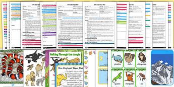 EYFS Adult Input Planning and Resource Pack Jungle Animals Themed  - Walking through the jungle, julie lacome, jungle, adult led, plan