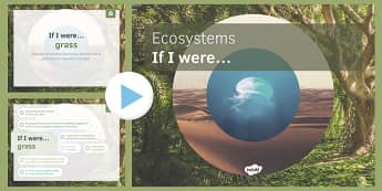 KS3 Ecosystems: If I were.... PowerPoint