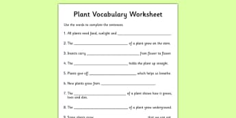 Plant Vocabulary Worksheet - plants, plant vocabulary, plant key words, green plants, living things, what plants need to leave, plant processes, ks2
