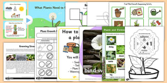 Horticulture and Growing Plants Activity Pack