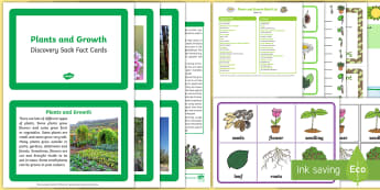 Plants and Growth Discovery Sack - EYFS, Early Years, KS1, plants, flowers, seeds, parts of a plant, roots, life cycle, grow, growth, growing, science, understanding the world
