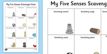 Five Senses Scavenger Hunt Worksheet - Science, Habitats, Australian Curriculum, Living, Environment, Living Things, Animals, Plants, Worksheet, Field Walk, Observations, Senses