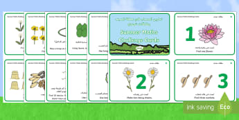 Summer Maths Challenge Cards Arabic/English - Counting, Number, Shape, Outdoor Learning, Outside EAL Arabic,Arabic-translation