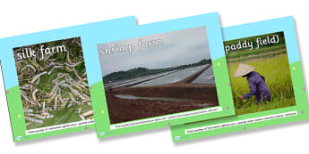 Different Types of Farm Photo PowerPoint - different types of farm, different types of farm powerpoint, farm photo powerpoint, farms photo powerpoint