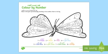 Butterfly Colour by Number to Support Teaching on The Very Hungry Caterpillar Arabic/English - The Very Hungry Caterpillar Butterfly Colour by Number - count, the very hungry caterpilar, hungary