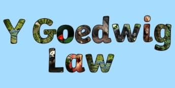 'Pecyn Llythrennau gyda Lluniau - WL Social Media Requests in Welsh FP (HIGH PRIORITY), Llythrennau arddangosfa Y Goedwig Law, baner a