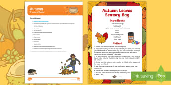 EYFS Autumn Treasure Basket Ideas - Autumn, baby, babies, sensory play, season,
