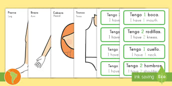 Body Part Counting Cut-Out Activity Spanish (Latin)/US English - Body Part Counting Cut-Out Activity - ourselves, myself, body parts, human body, oursleves, countng,