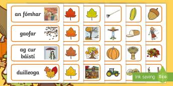 Autumn Topic Word Cards Gaeilge - fómhar, aimsir, weather, season, séasur,Irish