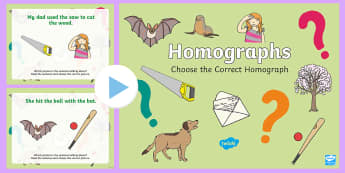 Choose the Correct Homograph PowerPoint - Homograph, ELA, Common Core, Interactive Resource, SmartBoard, Sentences