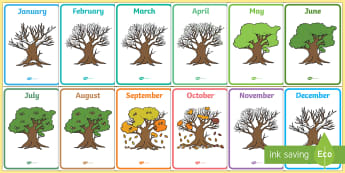 Months of the Year on Oak Trees Display Posters - Months of the Year on Oak Trees - month, months, year, seasons, tree, british wildlife