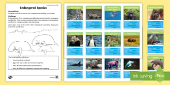 Endangered Species Top Card Game - amazing fact august, endangered, critical, species, animal, extinction, manatee