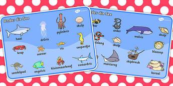 Afrikaans Onder Die See Woordmat - see, seediere, woordeskat, woorde, onder die see