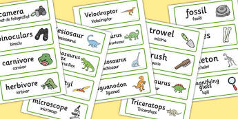 Dinosaur Museum Topic Word Labels Romanian Translation - romanian