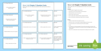 Chapter 9 Question Cards to Support Teaching on 'Stone Cold' by Robert Swindells - Swindells, Comprehension, Shelter, Link, Assess