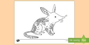 Bilby Mindfulness Colouring Page - Australian Mindfulness Colouring, ,Australia