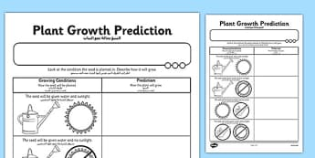 Plant Growth Prediction Worksheet Arabic Translation - arabic, plants, living things, plant growth worksheet, plant growth prediction worksheet, predicting why plants grow, science