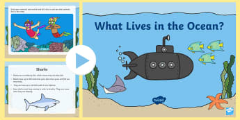 What Lives in the Ocean? PowerPoint - Ocean, Sea, Beach, Powerpoint, Ocean powerpoint, sea powerpoint, ocean animals, ocean habitats, habi