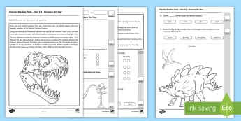 Practice Reading Tests for Year 2 and 3 Dinosaur on Tour - Reading Practice Tests for Wales, Reading, reading, tests, test, profion, darllen a deall, year 3, y