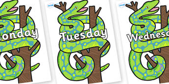 Days of the Week on Boa Constrictor to Support Teaching on The Bad Tempered Ladybird - Days of the Week, Weeks poster, week, display, poster, frieze, Days, Day, Monday, Tuesday, Wednesday, Thursday, Friday, Saturday, Sunday
