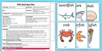 Under the Sea Describe It and Find It EYFS Adult Input Plan and Resource Pack