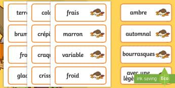 Cartes de vocabulaire sur l'automne - Saisons, cycle 1, animaux, adjectif, le temps